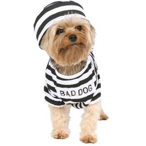 baddog