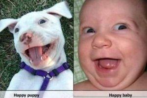 HappyPupBaby